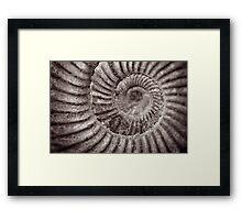 Archimedean spiral Framed Print