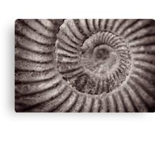 Archimedean spiral Canvas Print