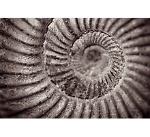 Archimedean spiral Photographic Print