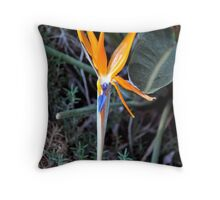 BIRD OF PARADISE IN BLOOM Throw Pillow