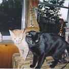 Ozzie and Otis by maggiepoohbear