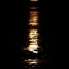 """""""Staircase to the Moon"""" by Sue  Fellows"""