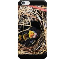 HUNGRY BIRDS iPhone Case/Skin