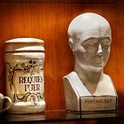 Phrenology Bust by rjcolby