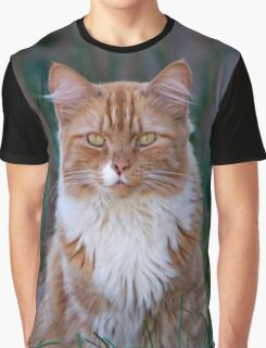 I Come to Visit Graphic T-Shirt