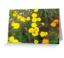 Sunshine flowers Greeting Card