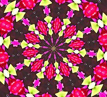 Flower Kaleidoscope by Margaret Stevens