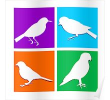 Colorful bird icons Poster