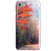 End of Fall  iPhone Case/Skin