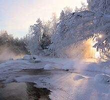 Good Morning Sun by Kari Liimatainen
