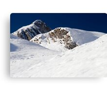 Winter in the Alps Canvas Print