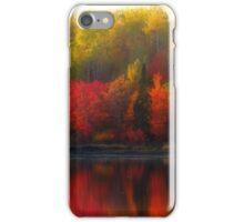 Autumn Rainbow iPhone Case/Skin