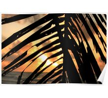 Mission Beach Sunrise Poster