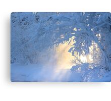 Door to another world  Canvas Print