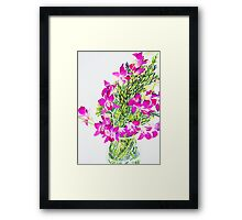 Singapore Orchids Framed Print