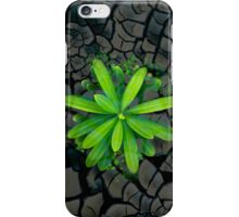 Dry soil - case iPhone Case/Skin