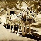 Gypsy Caravan by Linda Lees