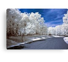 Infrared Road Canvas Print