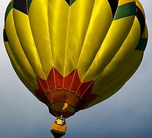 Up, Up and Away! by Ray Chiarello