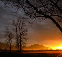 Setting Sun by Tracy Friesen