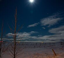 Icelandic Moonlight by Llewellyn Cass