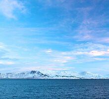 Mount Esja, Iceland by Llewellyn Cass