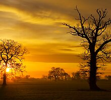 A Norfolk Sunrise by Darren Burroughs