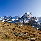 Alpine Sun by Walter Quirtmair