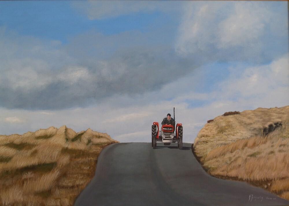 Heading home by Joe Fogarty