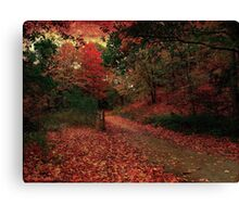 Whispering rouge Canvas Print