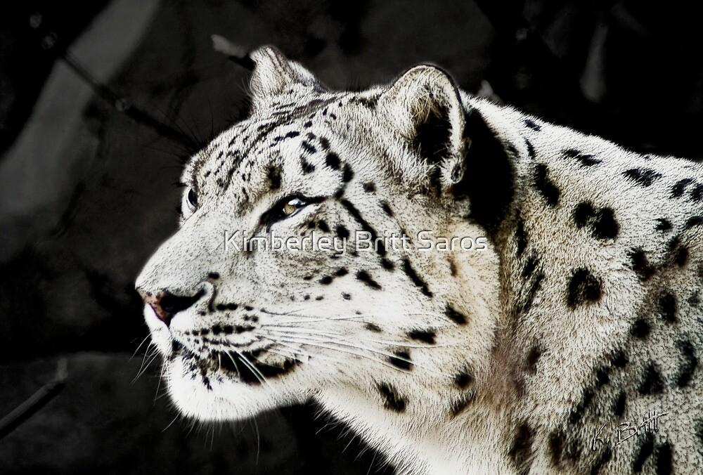 Snow Leopard by KBritt