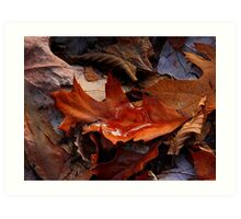 Still Autumn ! Art Print
