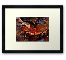 Still Autumn ! Framed Print