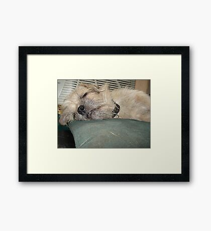 NO TEARS ON THIS PILLOW! Framed Print