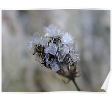Natures Crystal Poster