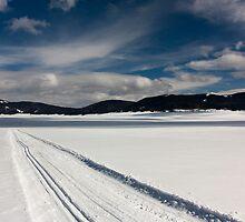 Endless Trail by •Kim Reiten•