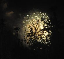 SILHOUETTED TREES IN CENTER OF FIREWORKS by JAYMILO