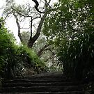Garden Stairs by Bami
