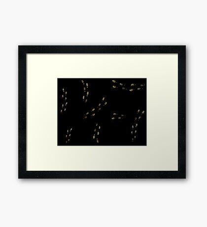 Marauders Map Footprints Framed Print