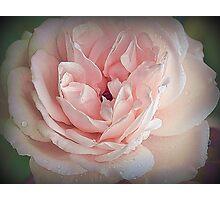 Tenderness.... Photographic Print