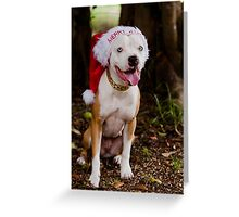 Dear Santa I've Been Good....Most Of The Time!  Greeting Card