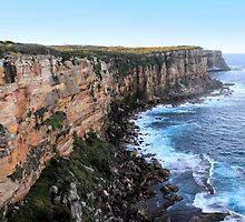 North Head Manly -  Vertical Cliff by miroslava