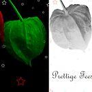 Prettige Feestdagen by jotography