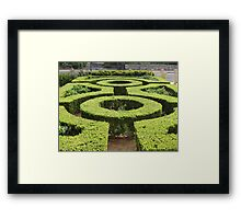 Be aMAZED Framed Print