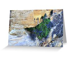 north head manly - imagine Greeting Card
