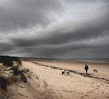 The beach, Holkham, Norfolk by jonlenton