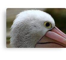 """""""Part of a Pelican"""" Canvas Print"""