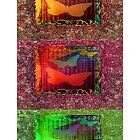 BUTTERFLIES. by Vitta