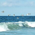 seagulls over wave by Sandy Maya Matzen
