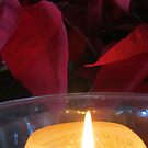 Christmas - Hanukkah - Kwanzaa - light in the world by PtoVallartaMex